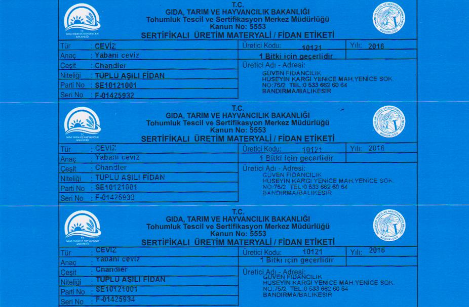 mavi-sertifikali-ceviz-fidani-etiket-sertifika
