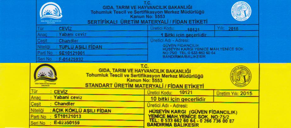 mavi-sertifikali-ceviz-fidani-sari-sertifikali-ceviz-fidani
